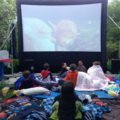 18' Backyard Movie Package picture 1