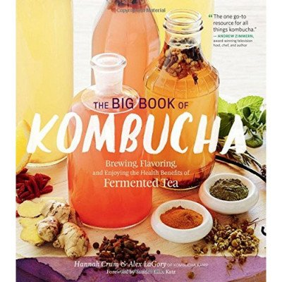 the big book of kombucha picture 1