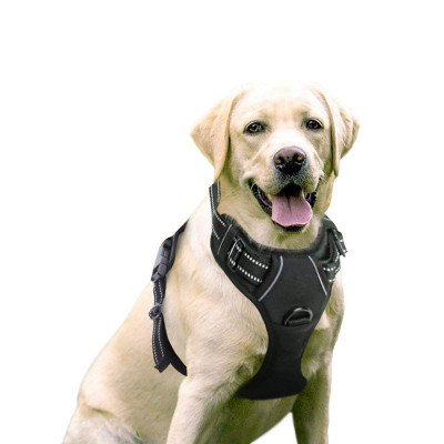No-Pull Pet Harness picture 1