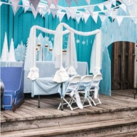Frozen/Winter Wonderland - Party Decorations and Setup