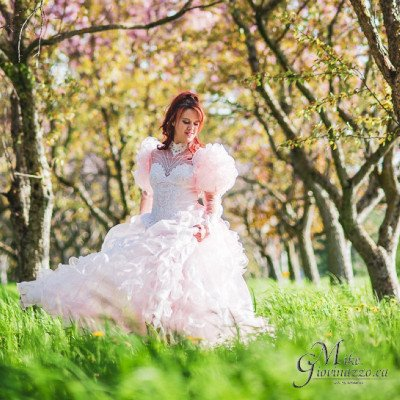 Pink Fantasy / Bridal Gown picture 1