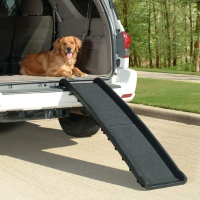 portable lightweight dog and cat ramp