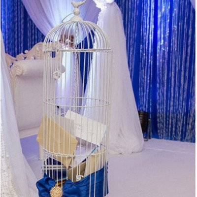 bird cage money box - tall standing