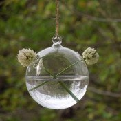 Clear glass hanging bubble