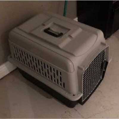 pet taxi - small dog crate-1
