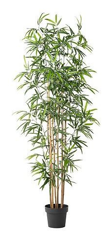 Artificial Potted Plant, Bamboo