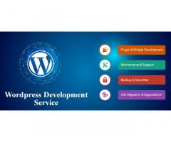 Looking for Reliable Source for WordPress Development Service