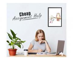 Get cheap assignment help at GotoAssignmentHelp by Top Assignment maker