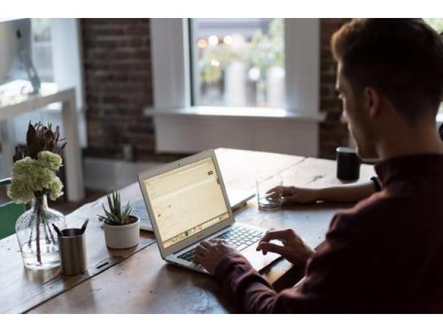 Online Webster University Assignment Help form BookMyEssay