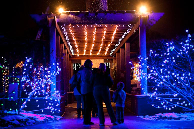 Snowy Nights: Memphis Botanic Garden Dec. 2 23