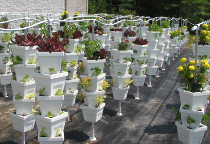 vertical_hydroponic_growing_system