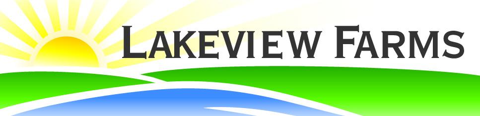 LV Logo no outline