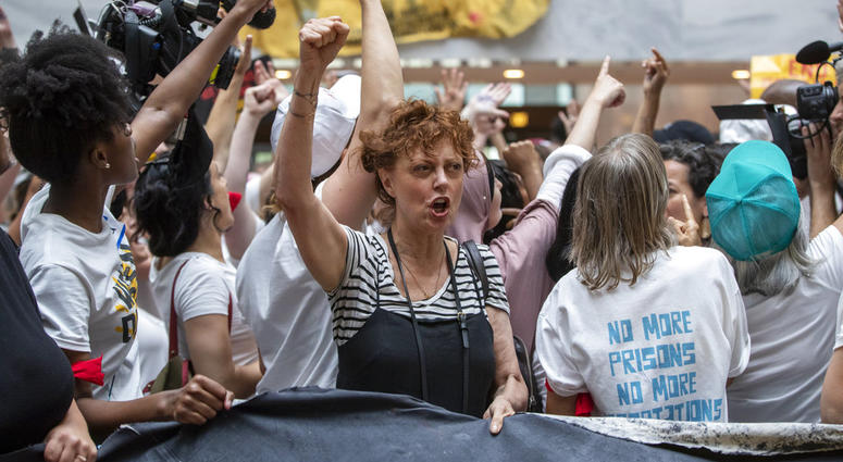 Susan Sarandon at Protest of Trump Immigration Policy