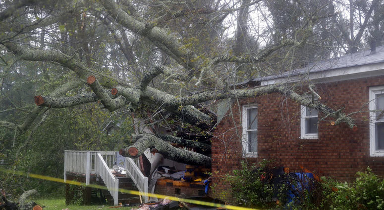 A fallen tree is shown after it crashed through the home where a woman and her baby were killed in Wilmington, N.C.