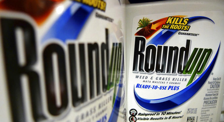 Bottles of Roundup herbicide, a product of Monsanto, are displayed on a store shelf in St. Louis.