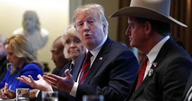 President Donald Trump leads a roundtable discussion on border security with local leaders, Friday, Jan. 11, 2019