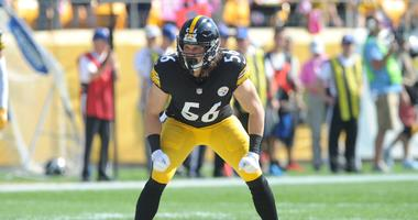 768feeb82 Steelers Sign Punter Berry And Linebacker Chickillo To New Deals