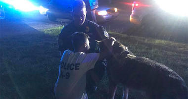 Police Officer Prays with 9-Year-Old Before Brain Surgery