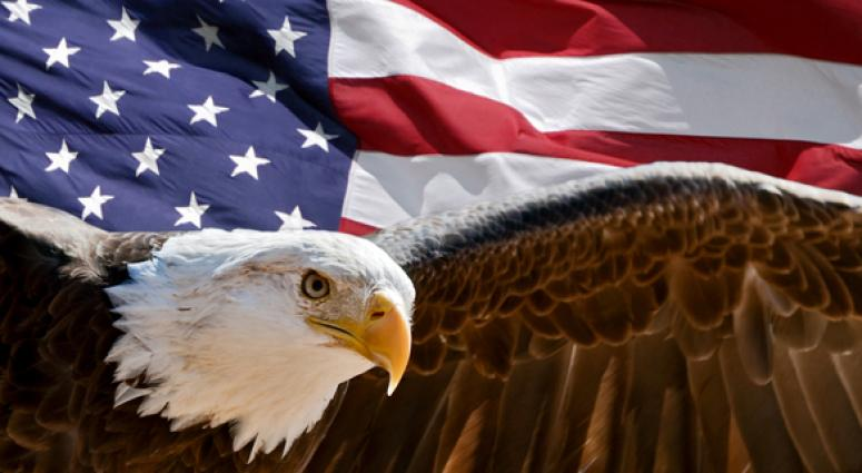 Bald Eagle Had One Prominent Foe Enroute To Becoming National Symbol