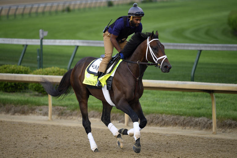An exercise rider works Kentucky Derby entry Magnum Moon at Churchill Downs.