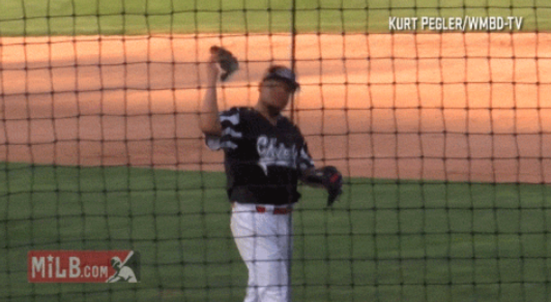 Peoria Chiefs pitcher catches a bird.