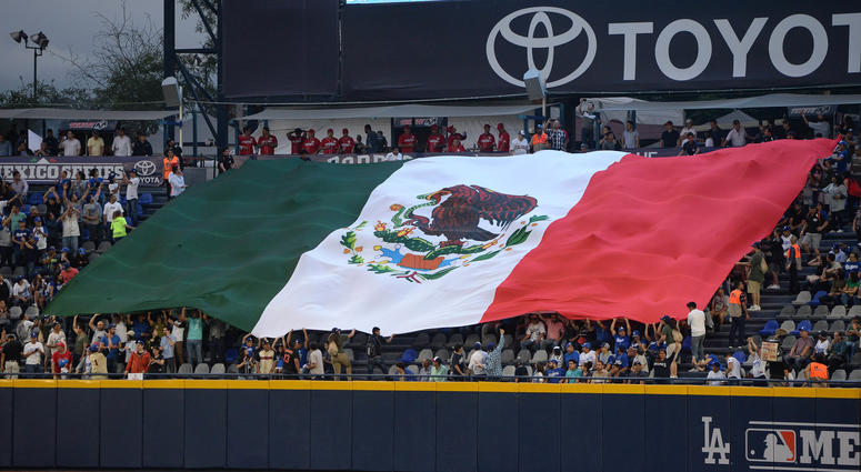 Fans unfurl a Mexican flag in the stands