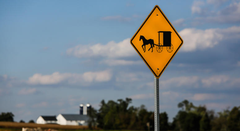 Amish buggy sign with farm in background.