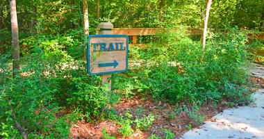 Hiking trail marker at Big Thicket National Preserve