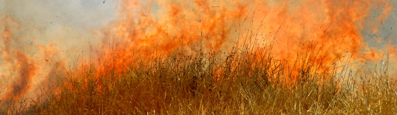 Project looks into how drones can predict spread of wildfire