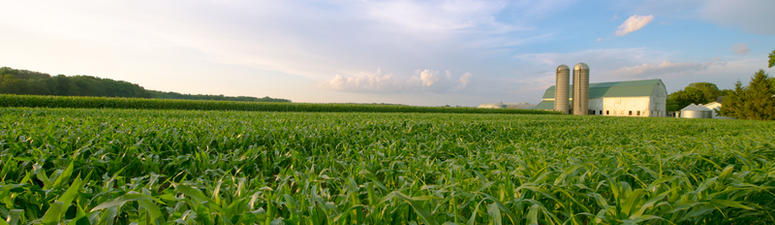 Farm bill compromise unveiled, clearing way for vote