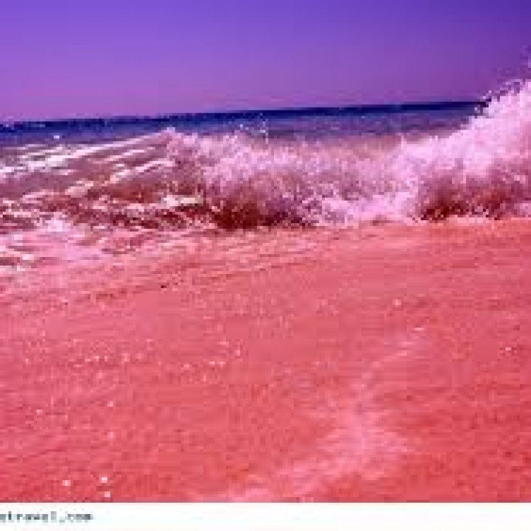 images.jpeg pink beach 2