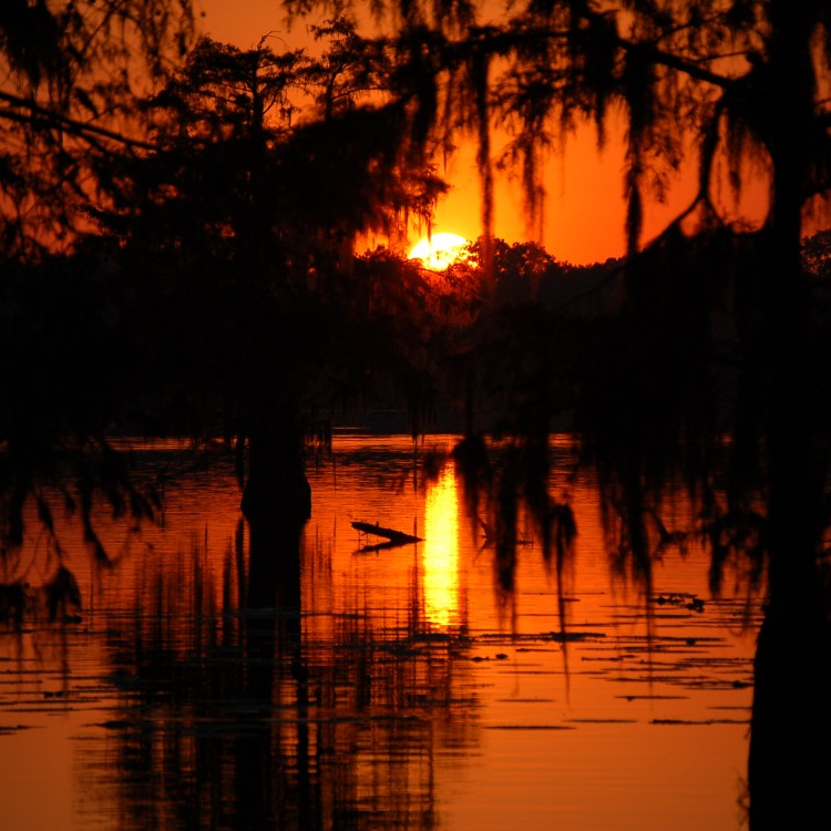 Swamp_Sunset_in_Cajun_Country
