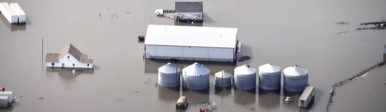 Floodwaters threaten millions in crop and livestock losses across the Midwest