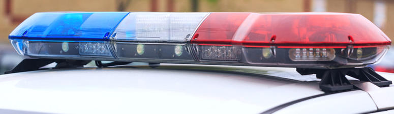 Police: Duo dumped deer carcasses on St. Cloud Somalis' cars