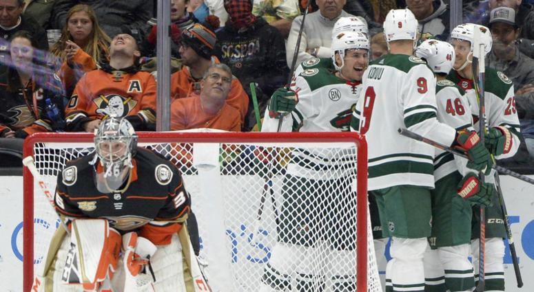 Another goal for the Wild