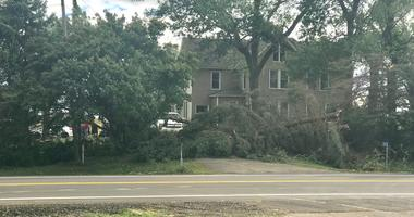 Four tornadoes confirmed in Minnesota, clean up underway