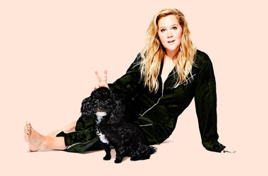 Amy Schumer at Heinz Hall November 18, 2018