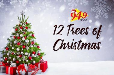 12 Trees of Christmas: Hear Why Beverly Kraemer of Wisconsin Dells will be Receiving some Holiday Cheer from Jim & Teri