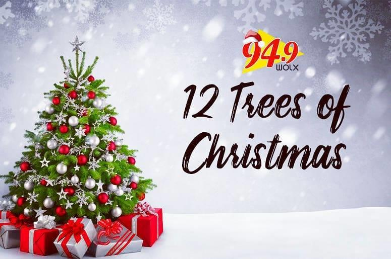 12 Trees of Christmas: Hear Who Joy Dregne of Verona Nominated to Receive some Holiday Cheer