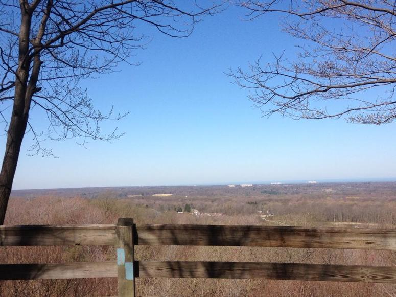 Chapin Forest Reservation Kirtland