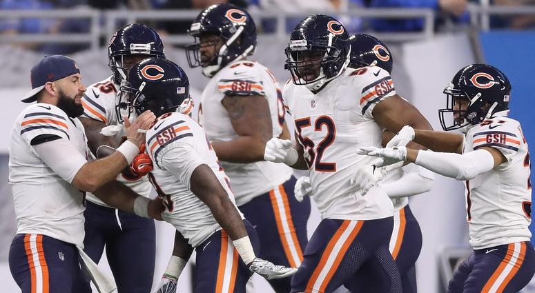 Image result for bears lions