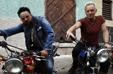 sting + shaggy