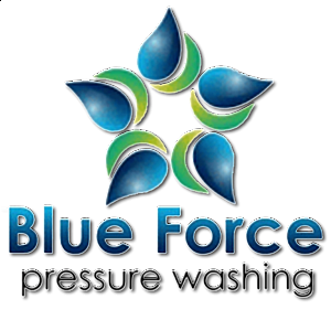 Blue Force Pressure Washing