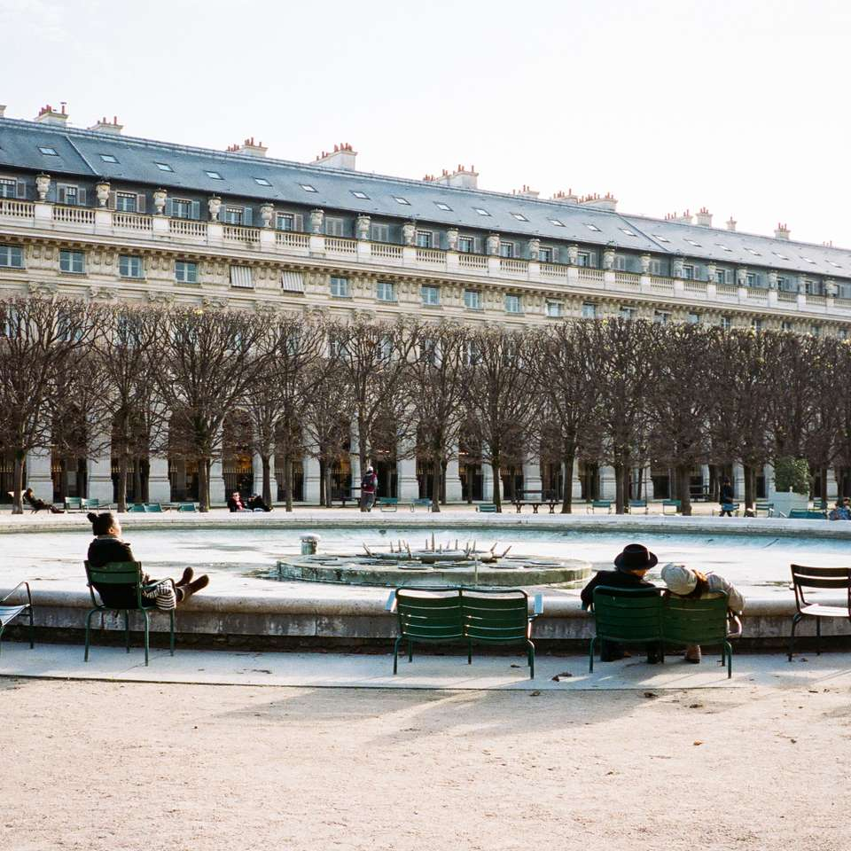 Parisians Enjoying Winter