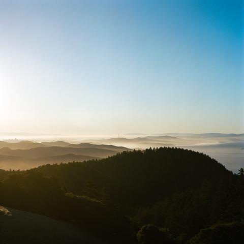 San Francisco Silhouette