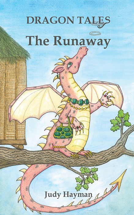 Book cover for The Runaway a book by Caroline  Wolfe-Murray, Judy  Hayman