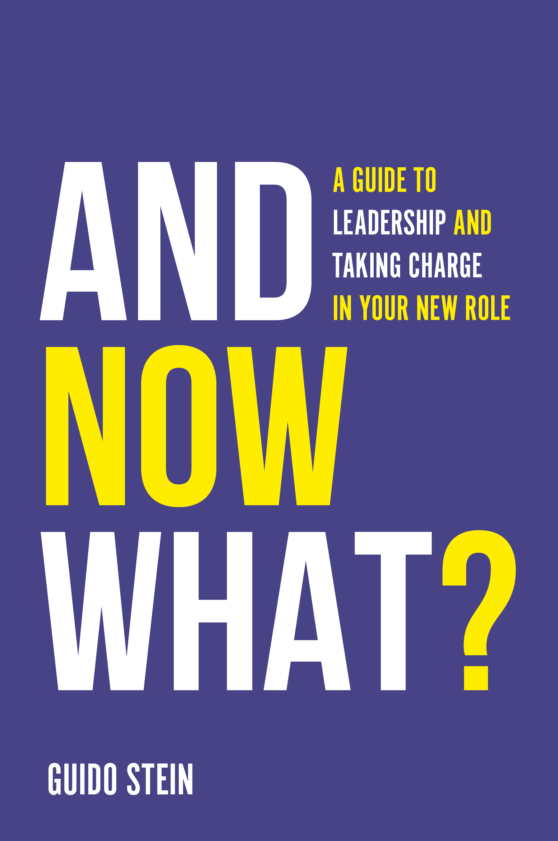 Book cover for And Now What?:  A Guide to Leadership and Taking Charge in Your New Role a book by Professor Guido  Stein