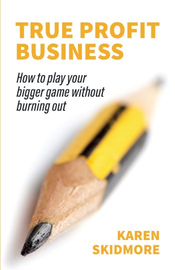 Book cover for True Profit Business:  How to play your bigger game without burning out a book by Karen  Skidmore