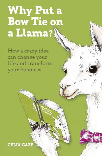 Book cover for Why Put a Bow Tie on a Llama?:  How a crazy idea can change your life and transform your business a book by Celia  Gaze