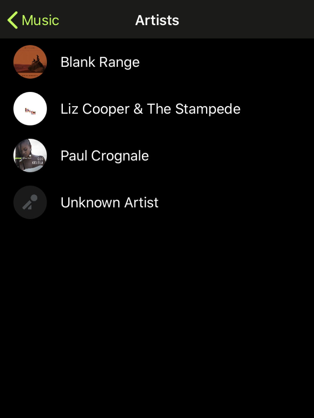 Music Library artist view